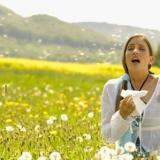 Allergie primaverili: la prevenzione è un'aria di qualità.