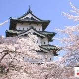 Agoda.com presenta alcune magnifiche offerte sugli hotel di Tokyo giusto in tempo per la colorata stagione dei sakura