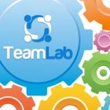 TeamLab REST API: ampie opportunità per l'integrazione web